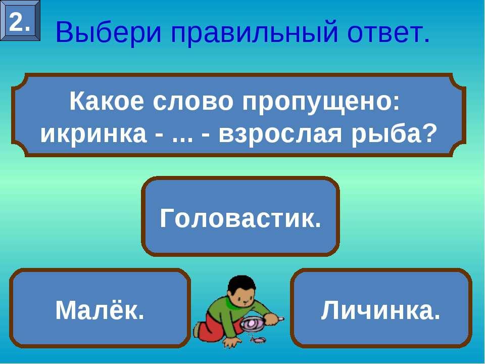 Какое слово пропущено: икринка - ... - взрослая рыба? Выбери правильный ответ...