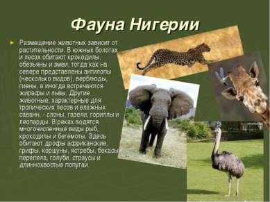 Фауна Нигерии Размещение животных зависит от растительности. В южных болотах ...