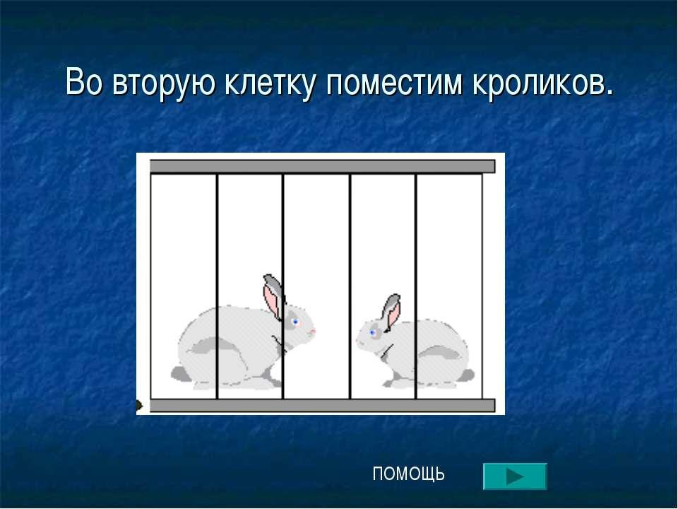 Во вторую клетку поместим кроликов. ПОМОЩЬ