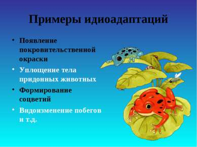 Примеры идиоадаптаций Появление покровительственной окраски Уплощение тела пр...