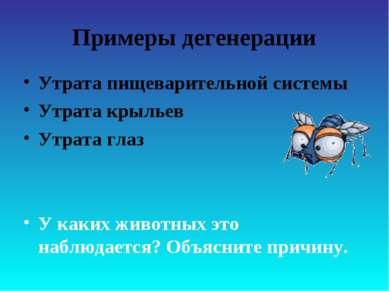 Примеры дегенерации Утрата пищеварительной системы Утрата крыльев Утрата глаз...