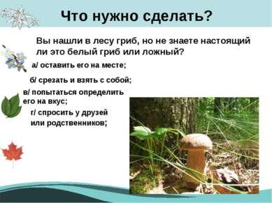 Что нужно сделать? Вы нашли в лесу гриб, но не знаете настоящий ли это белый ...