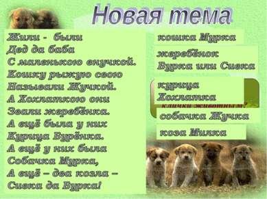 Правильно ли даны клички животным?
