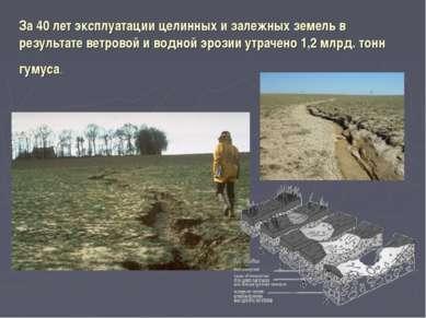 За 40 лет эксплуатации целинных и залежных земель в результате ветровой и вод...