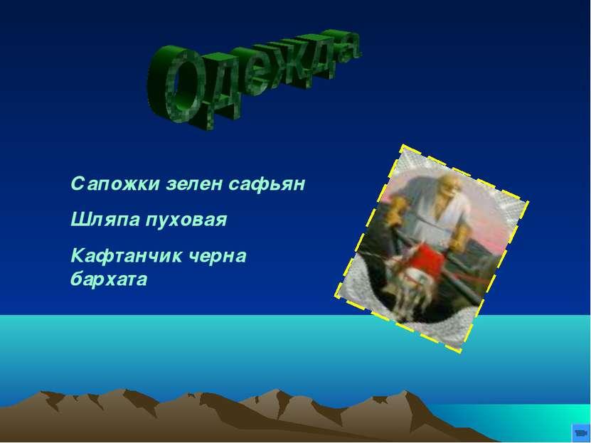 Сапожки зелен сафьян Шляпа пуховая Кафтанчик черна бархата