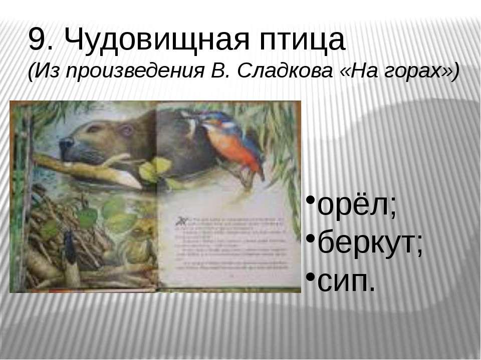 9. Чудовищная птица (Из произведения В. Сладкова «На горах») орёл; беркут; сип.
