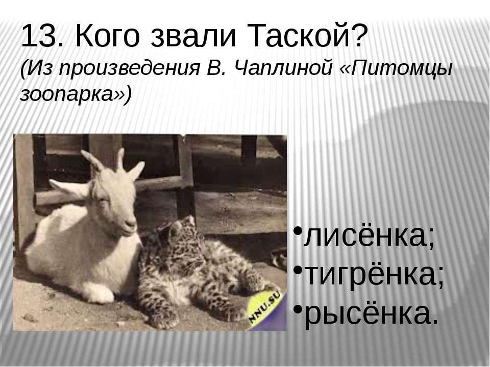 13. Кого звали Таской? (Из произведения В. Чаплиной «Питомцы зоопарка») лисён...