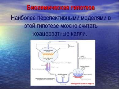 Биохимическая гипотеза Наиболее перспективными моделями в этой гипотезе можно...