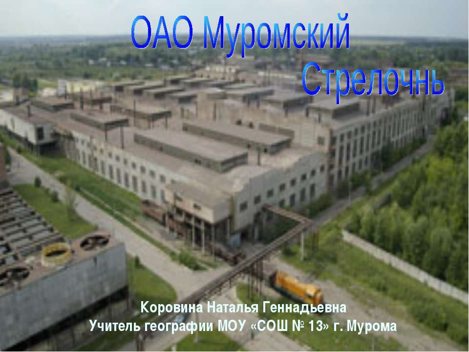 Коровина Наталья Геннадьевна Учитель географии МОУ «СОШ № 13» г. Мурома