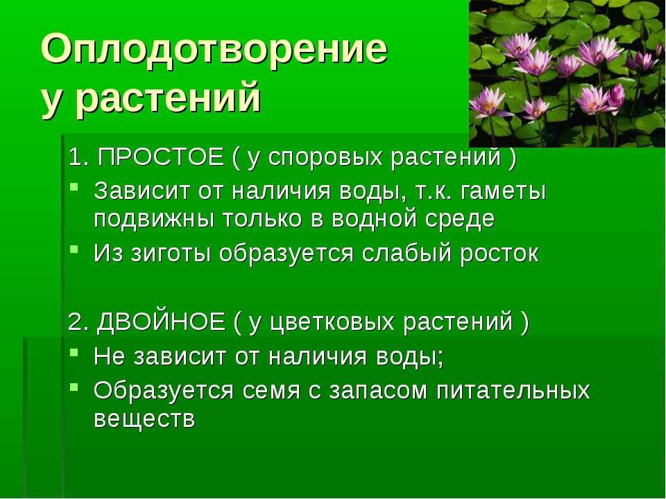 est-li-v-kirgizii-porno-sayti