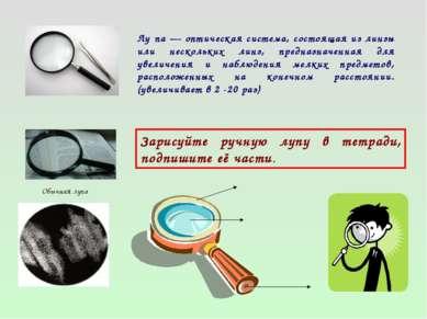 Обычная лупа Лу па — оптическая система, состоящая из линзы или нескольких ли...