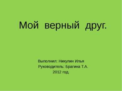 Мой верный друг. Выполнил: Никулин Илья Руководитель: Брагина Т.А. 2012 год.