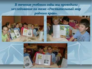 В течение учебного годы мы проводили исследование по теме «Растительный мир р...
