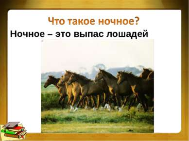 Ночное – это выпас лошадей