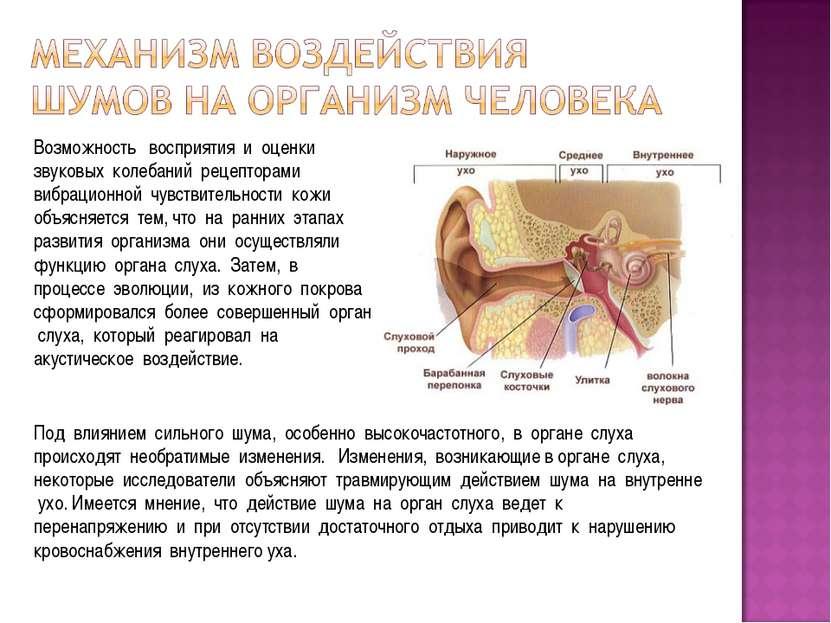 Возможность восприятия и оценки звуковых колебаний рецепторами вибрационной ч...