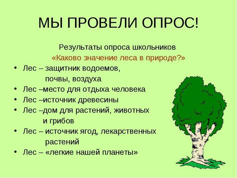 МЫ ПРОВЕЛИ ОПРОС! Результаты опроса школьников «Каково значение леса в природ...
