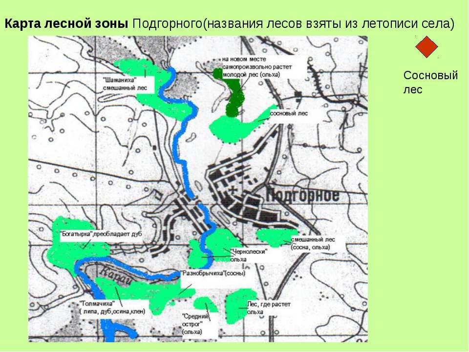 Карта лесной зоны Подгорного(названия лесов взяты из летописи села) + Сосновы...