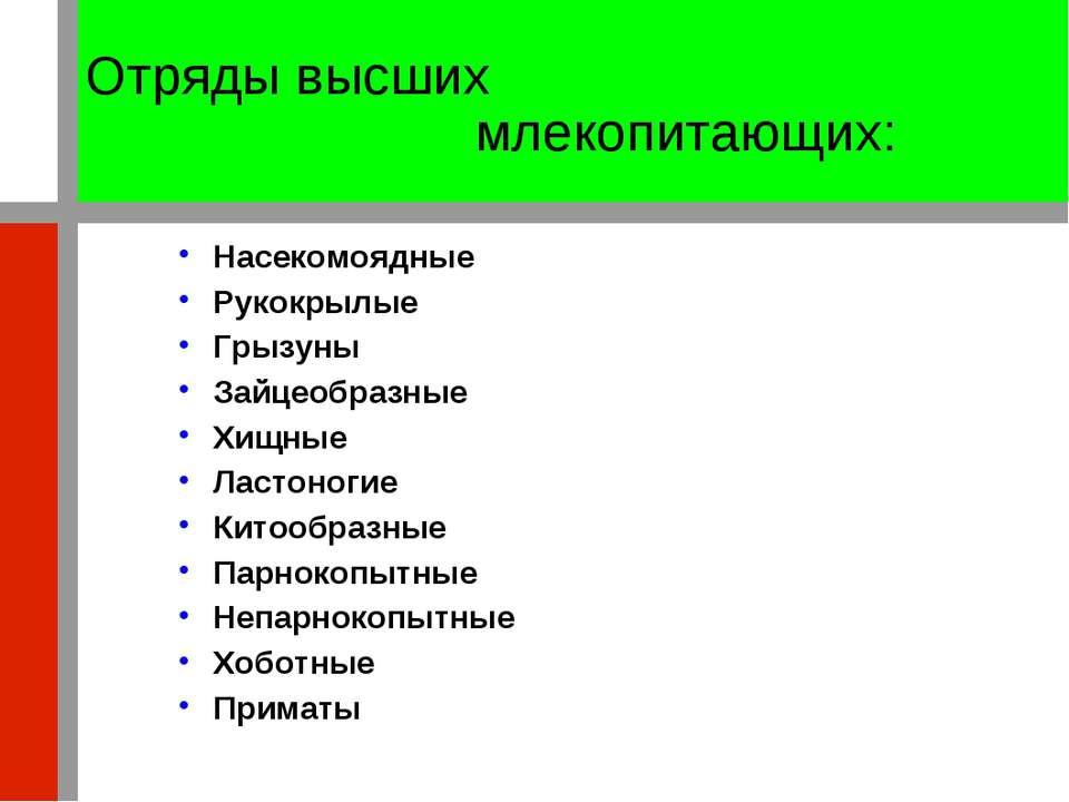 Отряды высших млекопитающих: Насекомоядные Рукокрылые Грызуны Зайцеобразные Х...
