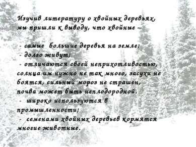 Изучив литературу о хвойных деревьях, мы пришли к выводу, что хвойные – - сам...