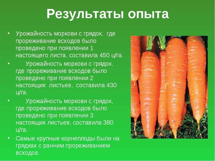 Результаты опыта Урожайность моркови с грядок, где прореживание всходов было ...