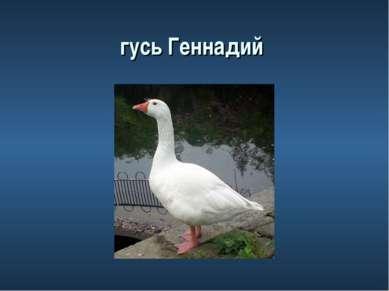 гусь Геннадий