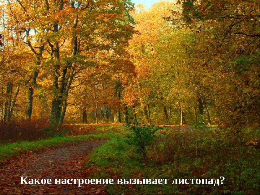 Какое настроение вызывает листопад?