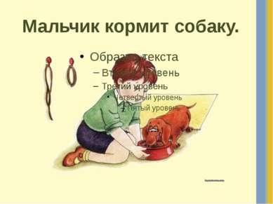 Мальчик кормит собаку.