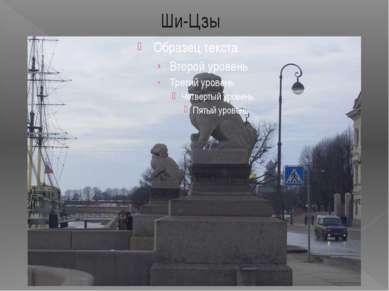 Ши-Цзы В 1907 году на Петровской набережной установили гранитные скульптуры «...
