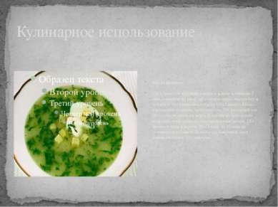 Кулинарное использование Щи из крапивы 150 г молодой крапивы отварить в воде ...