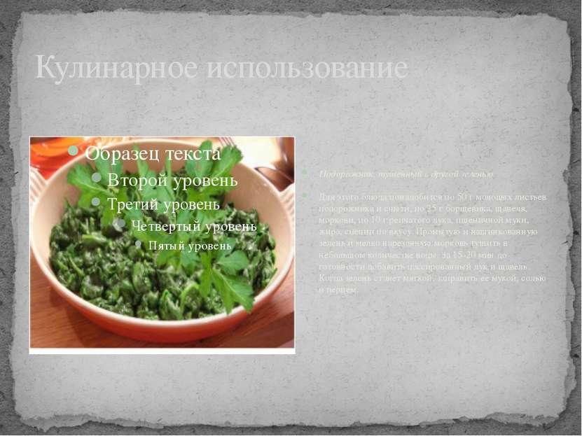 Кулинарное использование Подорожник, тушенный с другой зеленью Для этого блюд...