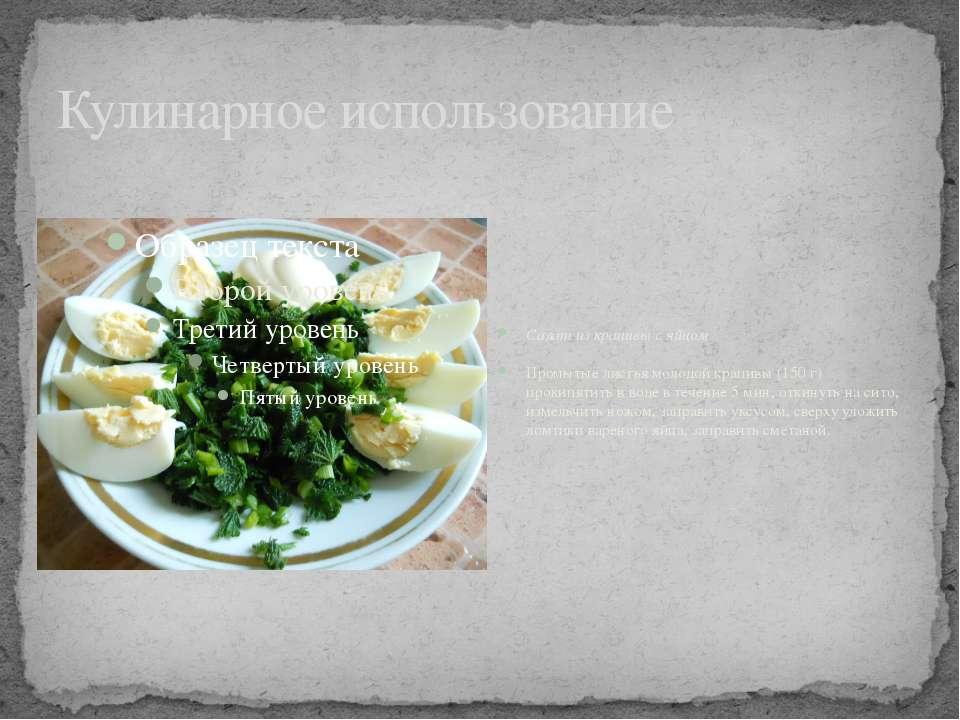 Кулинарное использование Салат из крапивы с яйцом Промытые листья молодой кра...