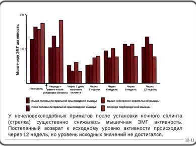 12-11 У нечеловекоподобных приматов после установки ночного сплинта (стрелка)...