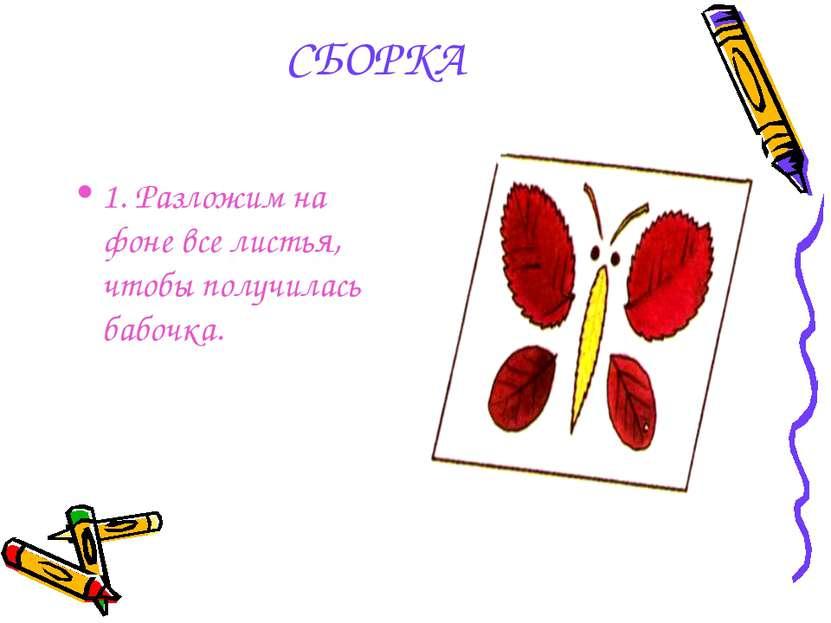 СБОРКА 1. Разложим на фоне все листья, чтобы получилась бабочка.