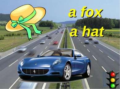 a fox a hat
