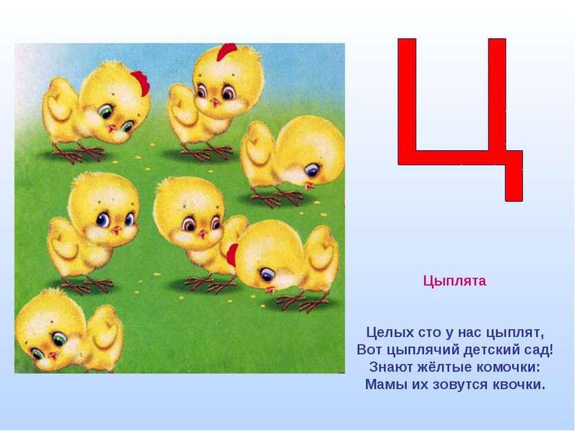 Цыплята Целых сто у нас цыплят, Вот цыплячий детский сад! Знают жёлтые комочк...