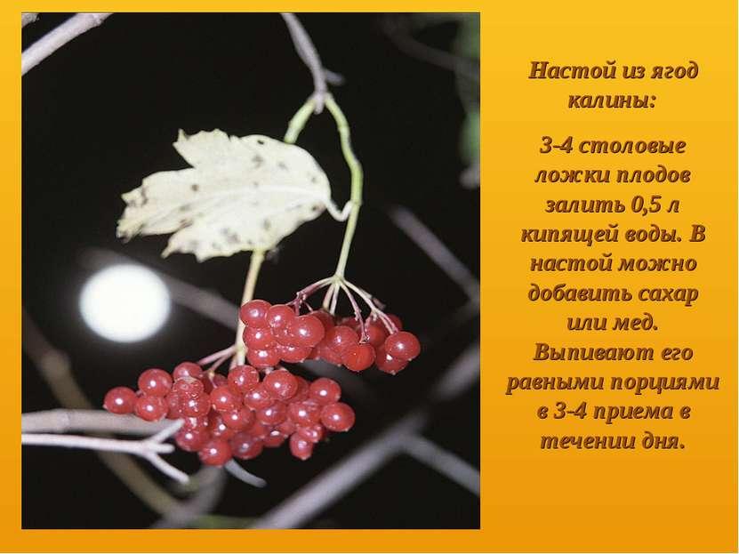 Настой из ягод калины: 3-4 столовые ложки плодов залить 0,5 л кипящей воды. В...