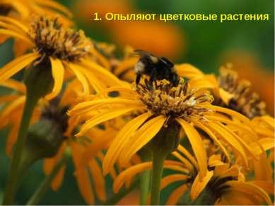 1. Опыляют цветковые растения
