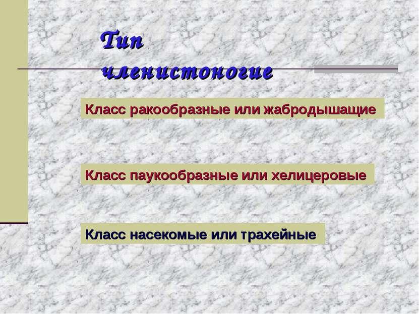 Тип членистоногие Класс ракообразные или жабродышащие Класс паукообразные или...