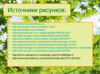 http://o9qx9.clg.hotnotice.eu/ http://as-flowers.narod.ru/index27.html http:/...