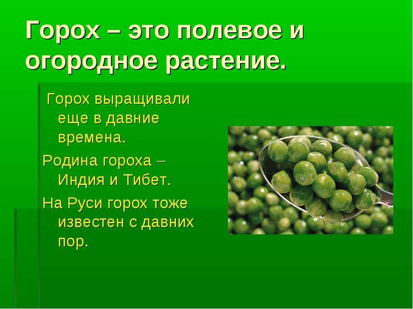 Горох – это полевое и огородное растение. Горох выращивали еще в давние време...