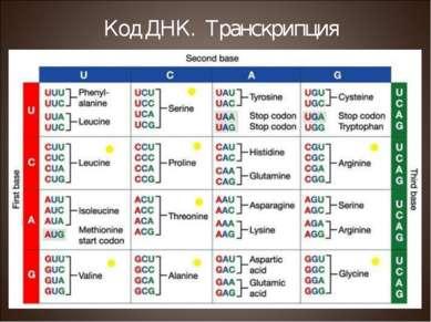 Код ДНК. Транскрипция