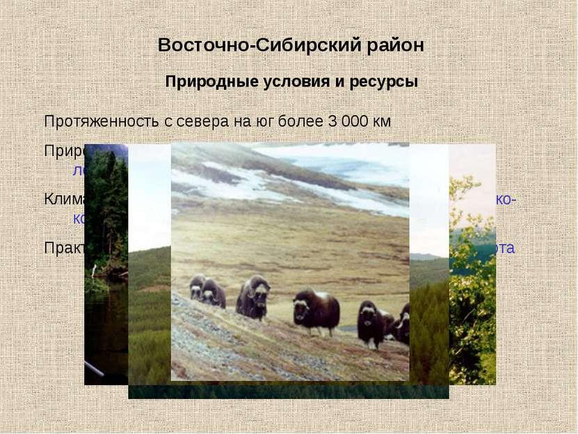 Восточно-Сибирский район Протяженность с севера на юг более 3 000 км Природны...