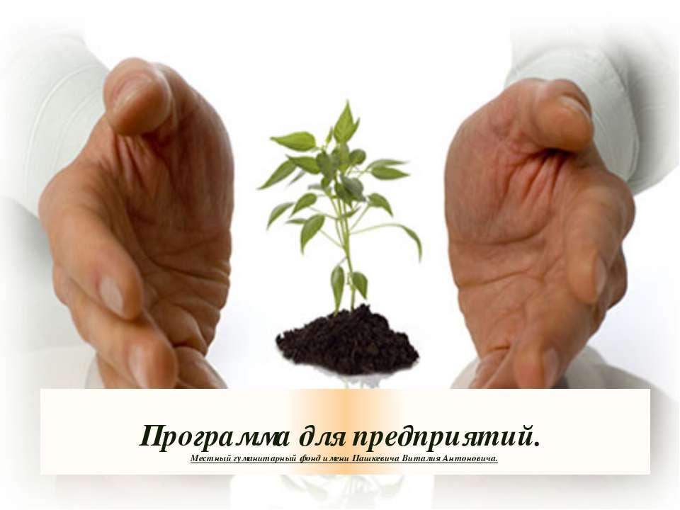 Программа для предприятий. Местный гуманитарный фонд имени Пашкевича Виталия ...