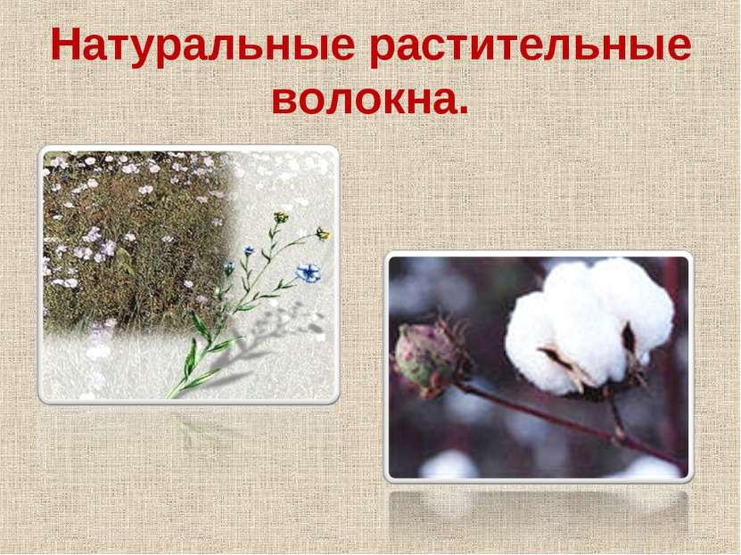 Натуральные растительные волокна.