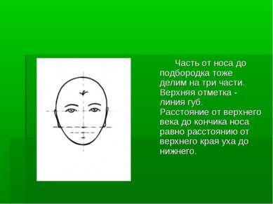 Часть от носа до подбородка тоже делим на три части. Верхняя отметка - линия ...