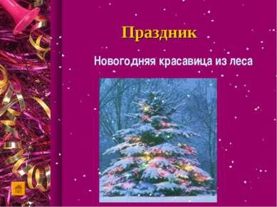 Праздник Новогодняя красавица из леса