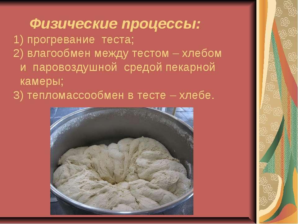 Физические процессы: 1) прогревание теста; 2) влагообмен между тестом – хлебо...