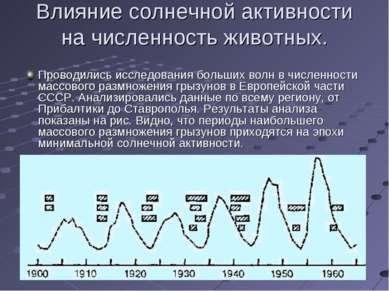 Влияние солнечной активности на численность животных. Проводились исследовани...