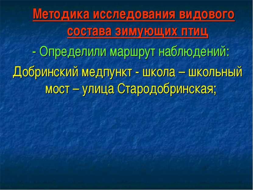Методика исследования видового состава зимующих птиц - Определили маршрут наб...
