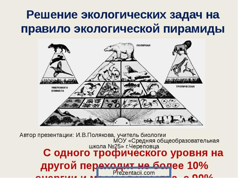 Решение экологических задач на правило экологической пирамиды Автор презентац...